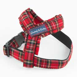 G&E HARNESS RED SCOTTISH