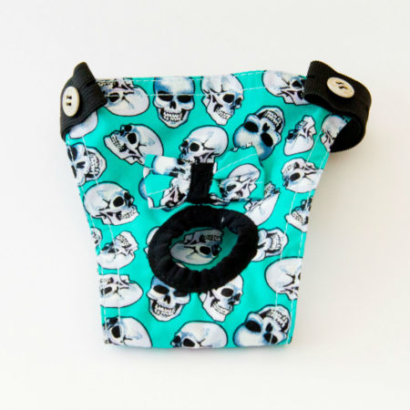 G&E FEMALE DOG PANTIE TURQUOIS SKULL