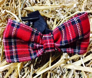 G&E BOW RED SCOTTISH