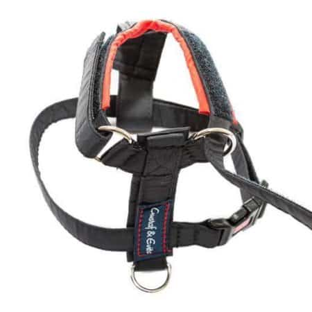 G&E Cat Strap Harness