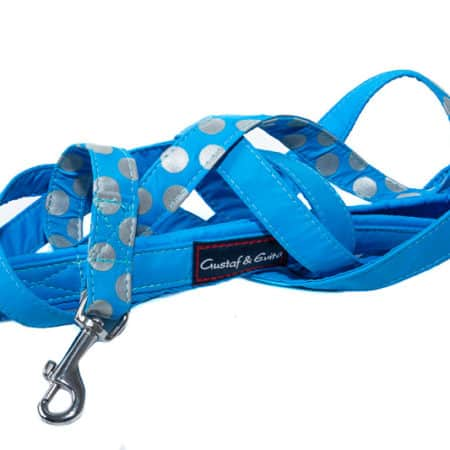 G&E LEASH SPOTLIGHT TURQUOISE