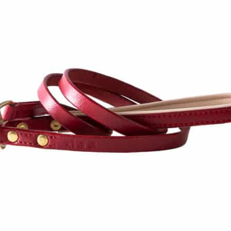 G&E Leash Paris